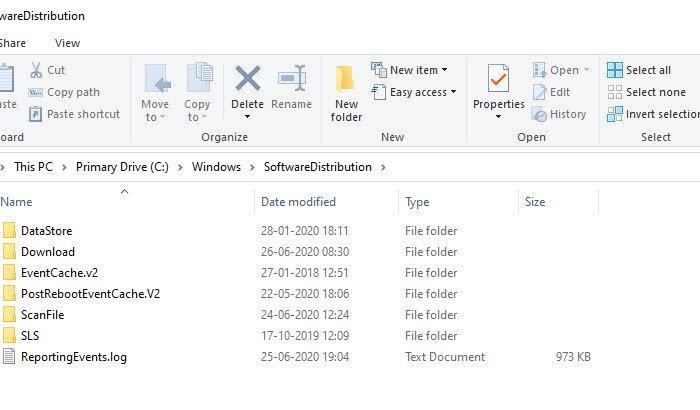 Borrar la carpeta Distribución de software de Windows